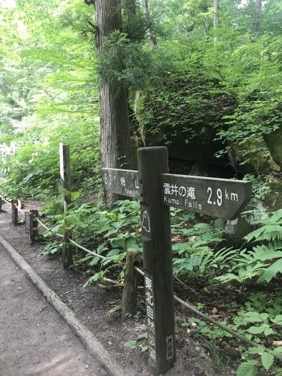 奥入瀬渓流と八甲田山_c0237291_06024226.jpeg