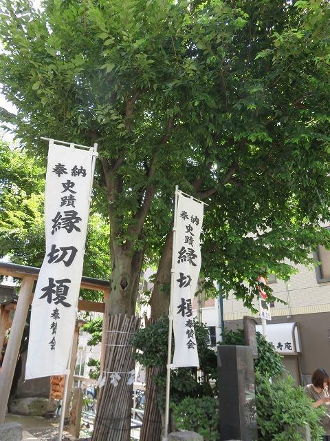 縁切榎 (新江戸百景めぐり㉘)_c0187004_18065191.jpg