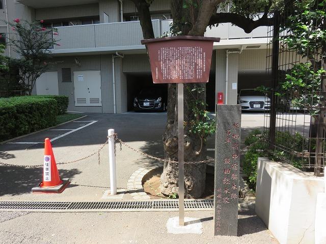 縁切榎 (新江戸百景めぐり㉘)_c0187004_18085276.jpg