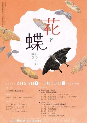 花と蝶_f0364509_19194050.jpg
