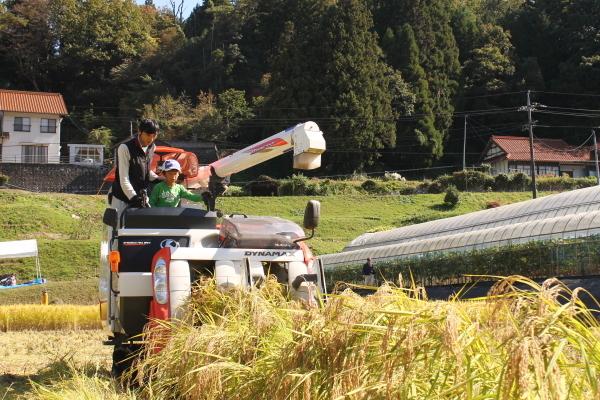 収穫の秋_b0281312_09192566.jpg