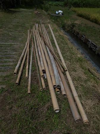 稲刈り準備 / 赤とんぼ_a0123836_17082604.jpg