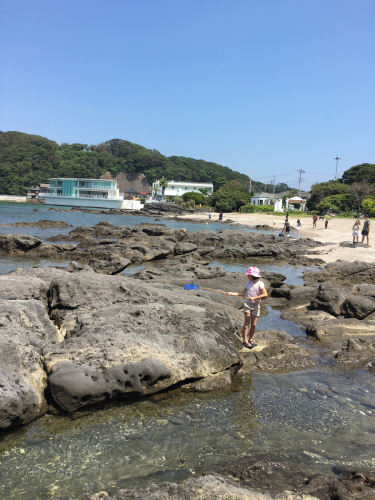 今年の夏は海遊びを沢山しました。_e0142956_10584888.jpg