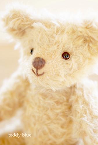 Dearest teddy  親愛なるテディへ_e0253364_18460131.jpg