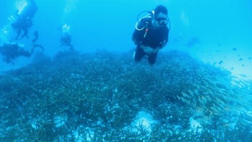 ラチャノイ島3ダイブ_f0144385_18481356.jpeg
