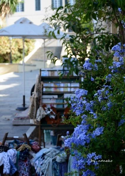 ギリシャのコルフ島へ_c0364500_22274855.jpg