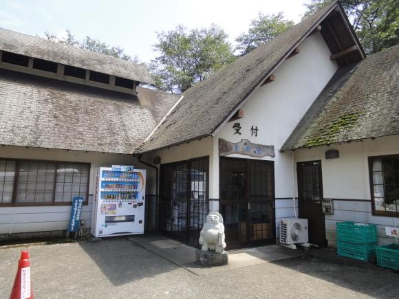 清川リバーランド訪問記_b0268916_04343215.jpg