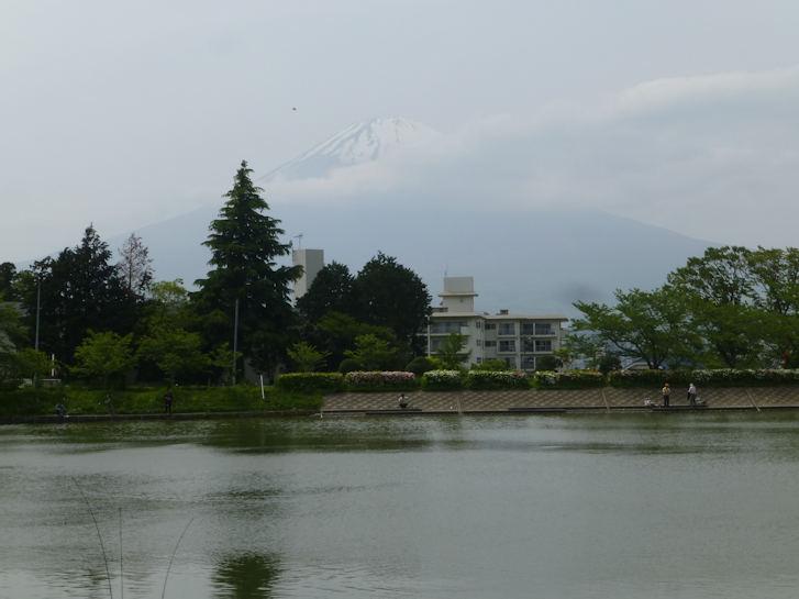 御殿場編(8):秩父宮記念公園(16.5)_c0051620_2132538.jpg