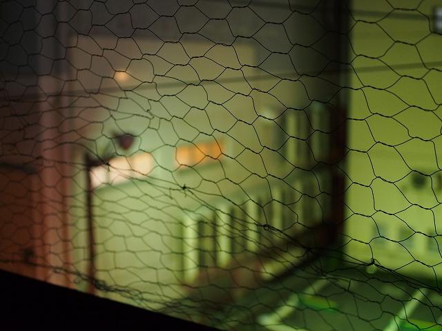 夜の街 1/2_d0052327_14163044.jpg