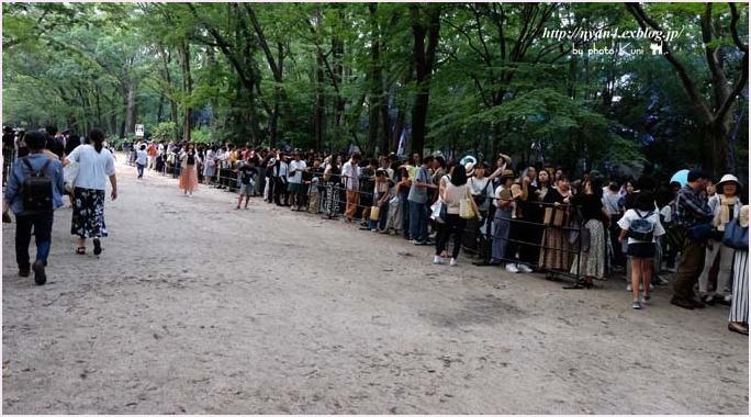下鴨神社 糺の森(光の祭り)_f0166234_02591777.jpg