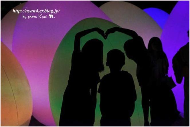 下鴨神社 糺の森(光の祭り)_f0166234_03070379.jpg