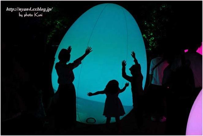下鴨神社 糺の森(光の祭り)_f0166234_03085211.jpg