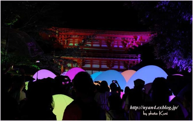 下鴨神社 糺の森(光の祭り)_f0166234_03114683.jpg