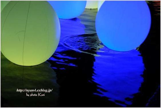 下鴨神社 糺の森(光の祭り)_f0166234_03131536.jpg