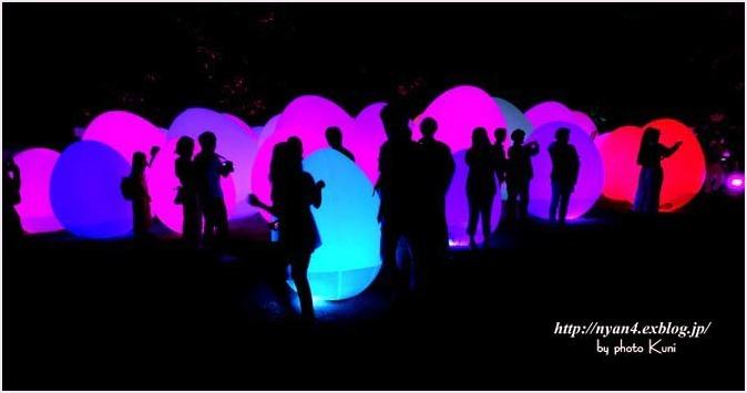 下鴨神社 糺の森(光の祭り)_f0166234_03135227.jpg