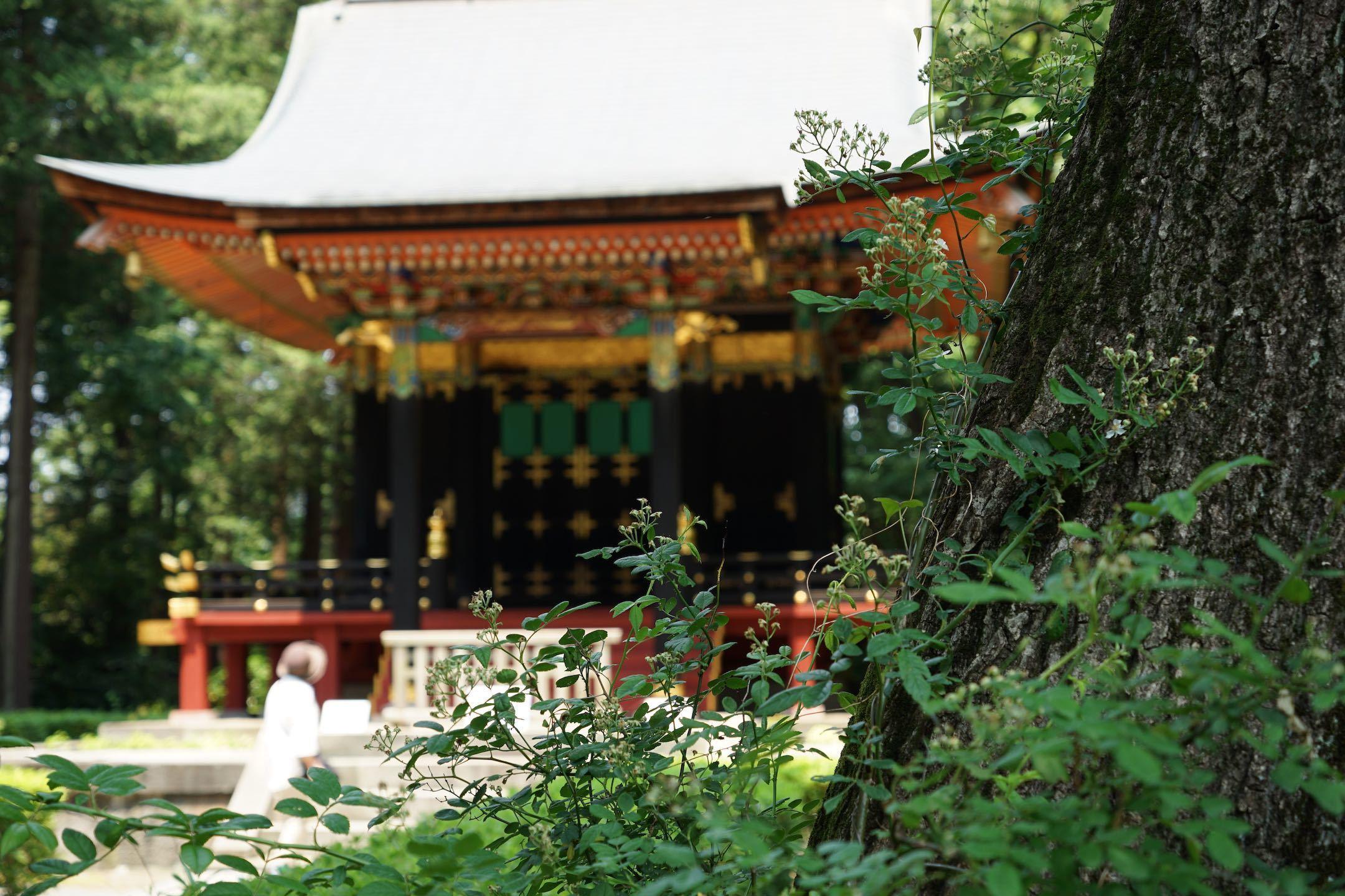 江戸東京たてもの園 1_b0360240_14413213.jpg