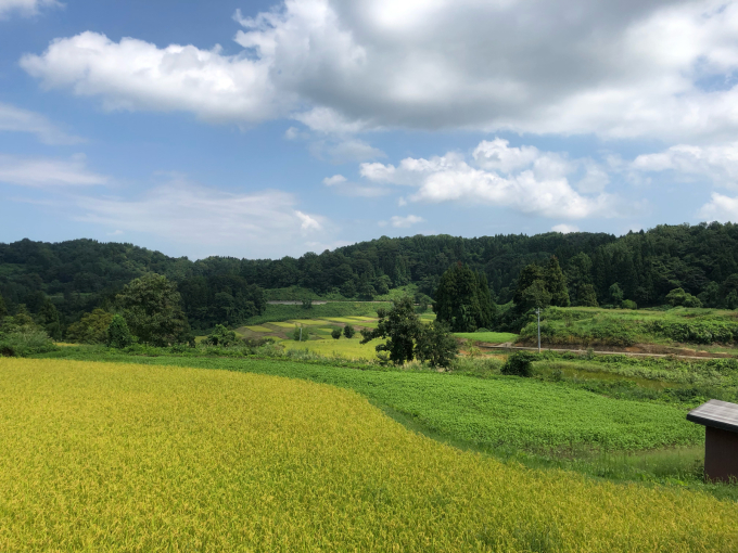 9月、収穫の季節_d0182179_08360251.jpg