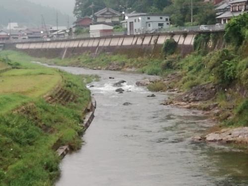 2019/9/1  水位観測  (槻の木橋より)_b0111189_05394147.jpg