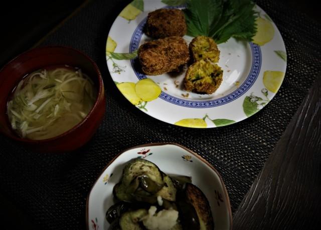 家庭菜園の野菜を使った 夏の「今夜の夕飯」_f0229190_14234678.jpg