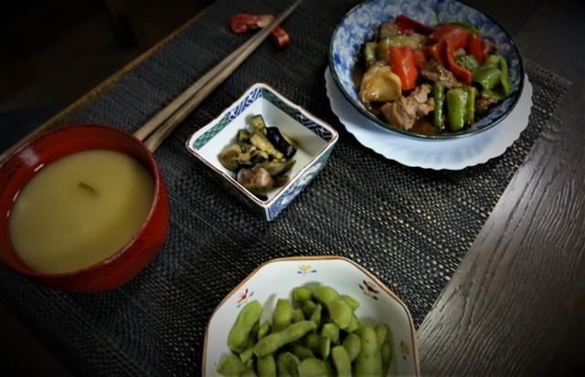 家庭菜園の野菜を使った 夏の「今夜の夕飯」_f0229190_14300946.jpg
