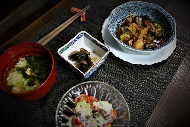 家庭菜園の野菜を使った 夏の「今夜の夕飯」_f0229190_14345153.jpg