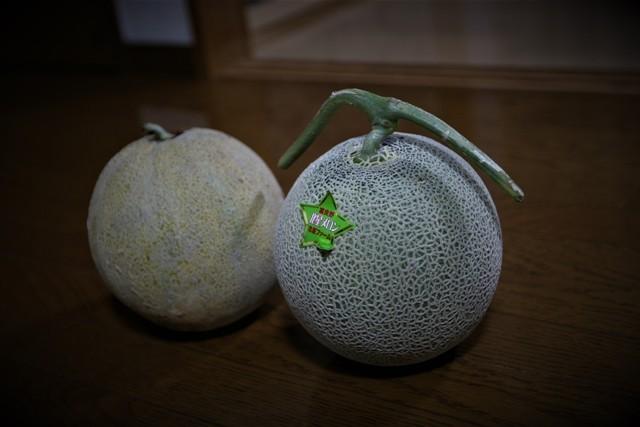 「富良野メロン」と「家庭菜園のサンライズメロン」_f0229190_15392265.jpg