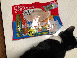 シジミとシフォン達のお届け&腕枕♬&フリマ品ありがとございます!!_d0071596_07233956.jpg