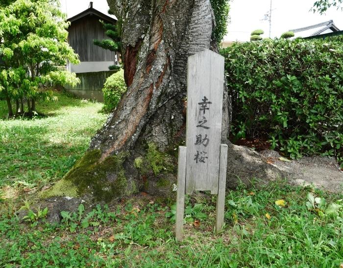 和歌山が生んだ偉人  2019-09-06 00:00  _b0093754_21070019.jpg