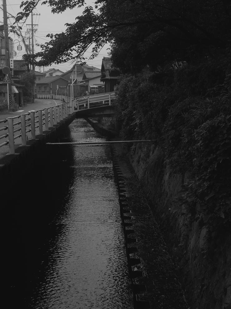 モノクロフィルム撮影その②_c0251576_18403663.jpg