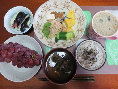 朝:サラダプレート、野菜ジュース、茄子の糠漬け 昼:大麦大豆紫蘇ヒジキ🍙&焼鳥ももタレ 夜:日清焼きそば、とうもろこし&冷奴_c0075701_20204216.jpg
