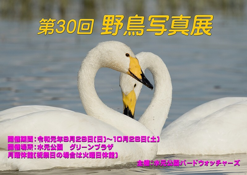 e0139623_20301803.jpg