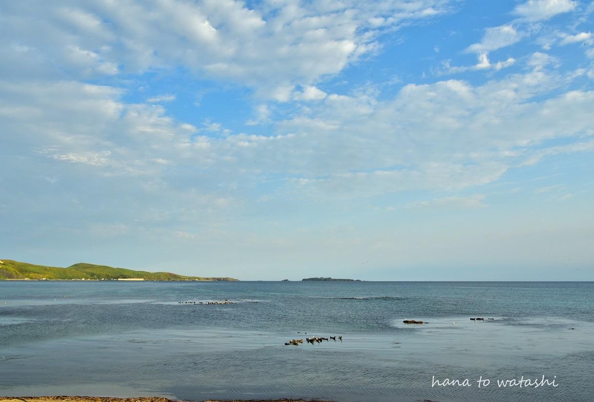 浜辺からの朝日_e0120026_23202525.jpg
