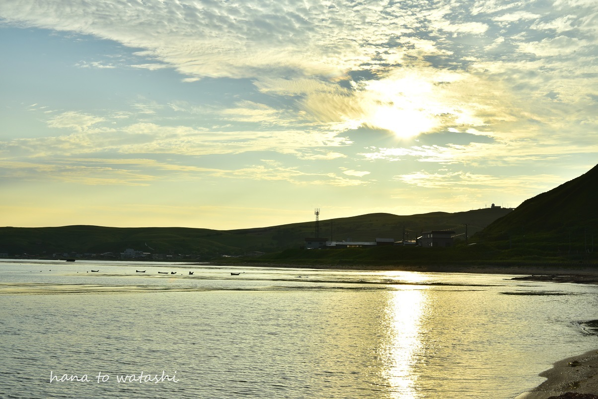 浜辺からの朝日_e0120026_23262649.jpg