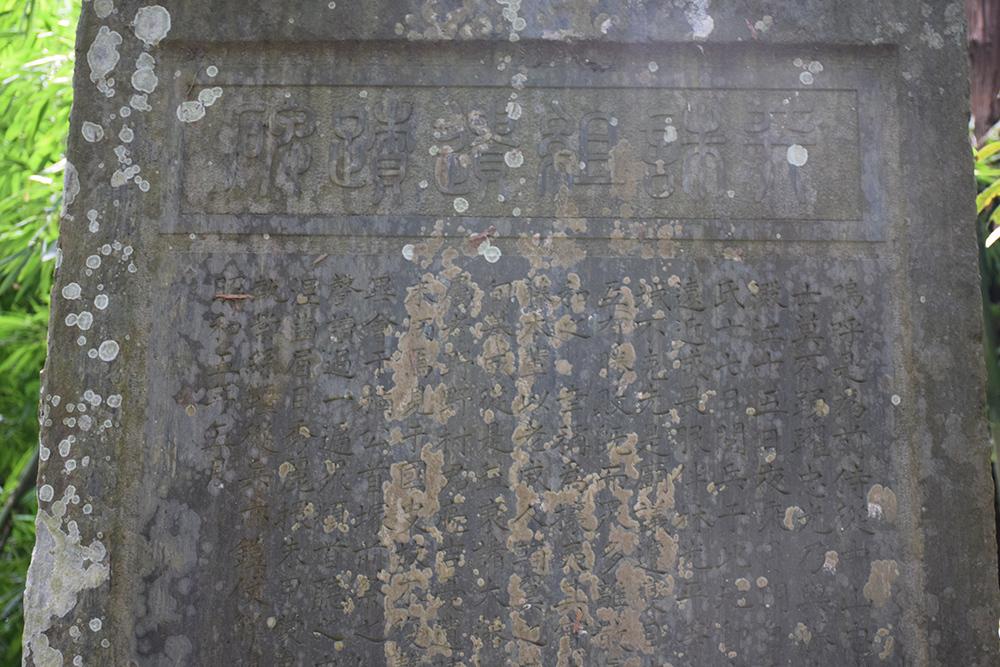 天誅組の足跡を訪ねて。 その5 「観心寺」_e0158128_15202885.jpg