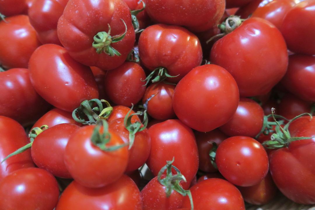 トマトざんまい 瓶づめ・野菜の重ね焼き_f0234936_514345.jpg
