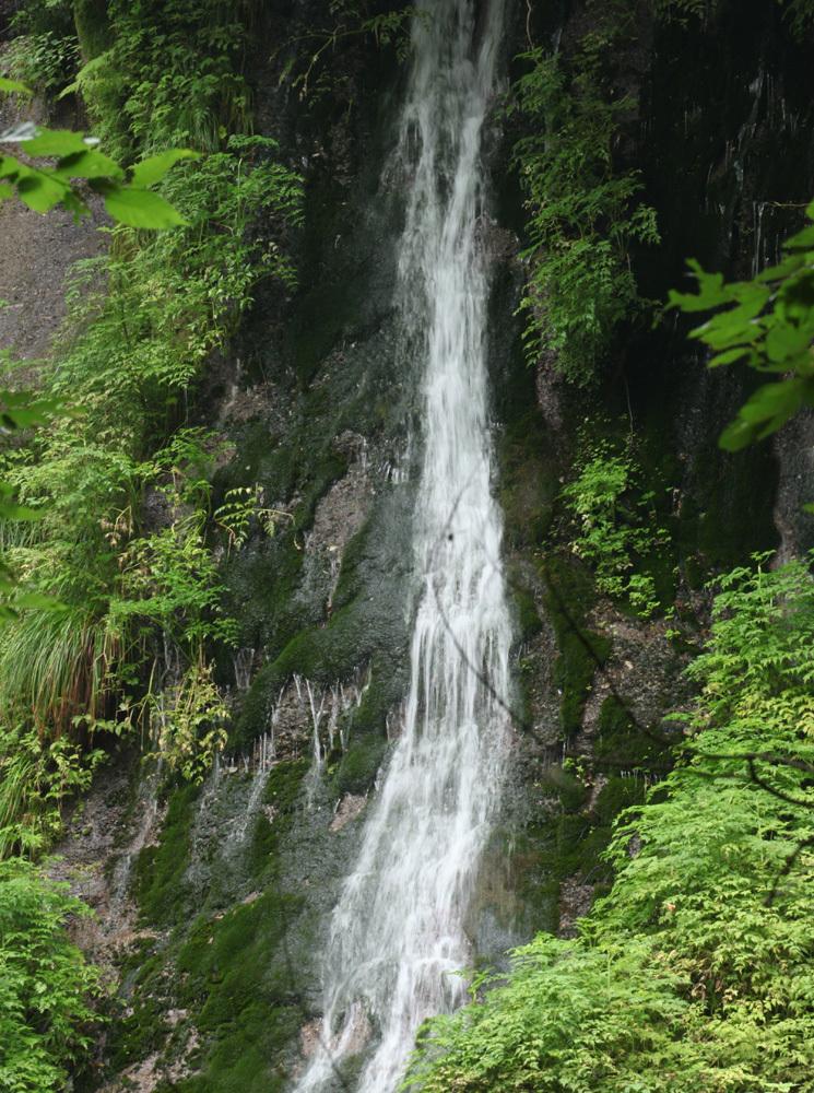 鳥取県 鳥取市国府町 はごろもの滝_c0108146_23520907.jpg