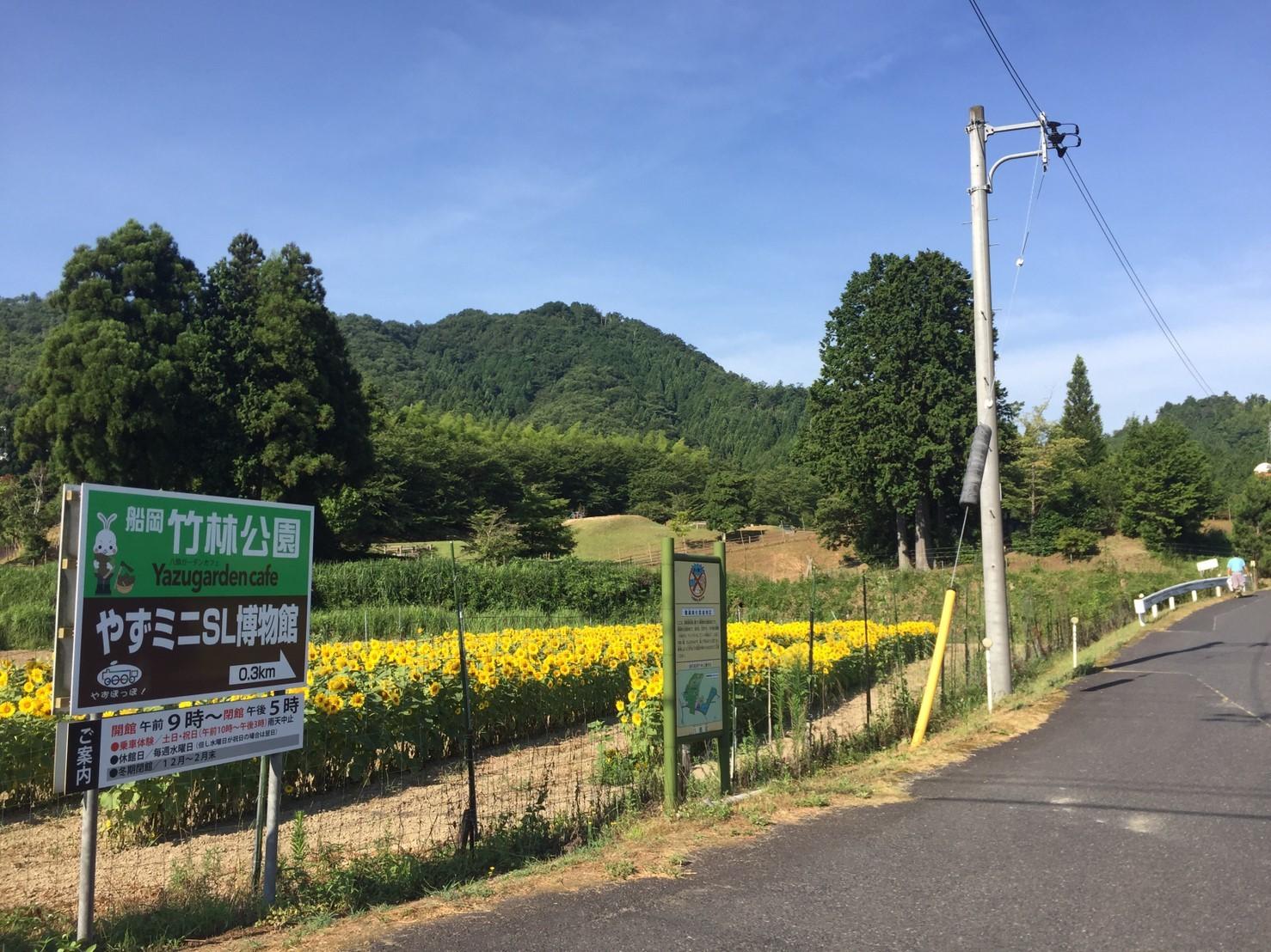 BBQキャンプ@船岡竹林公園_e0115904_04454586.jpg