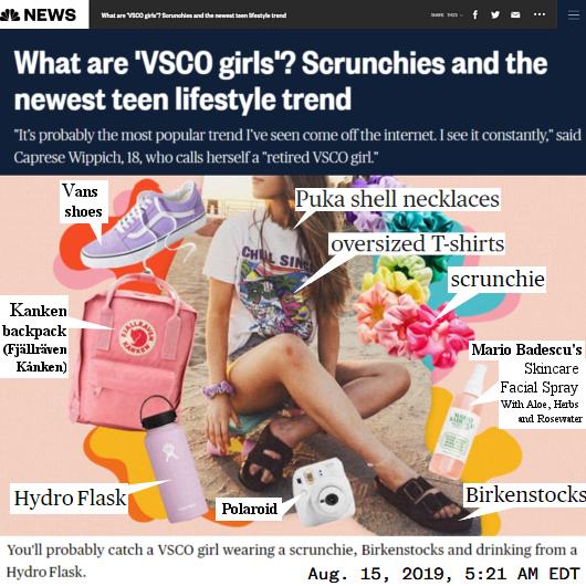 アメリカで話題のヴィスコ・ガール(VSCO Girl)って何?_b0007805_12235005.jpg