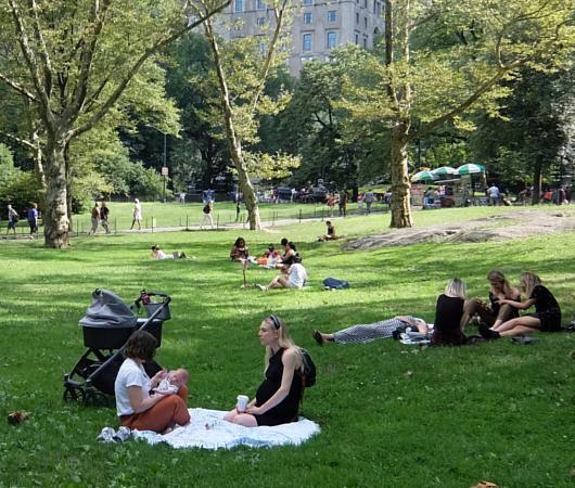 夏の終りのセントラルパーク、赤ちゃん連れの方々も_b0007805_22205629.jpg