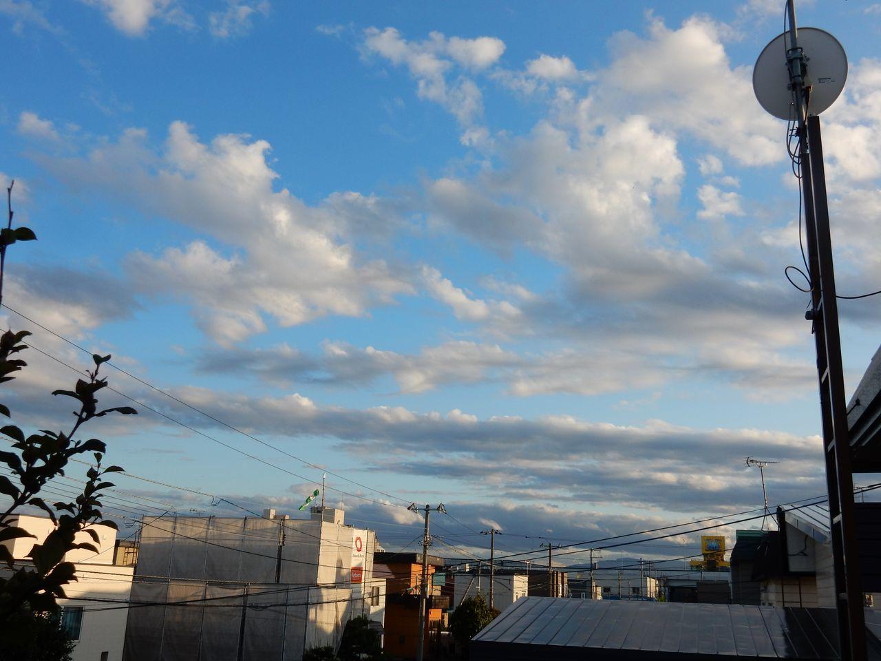 カラリと晴れ上がった夏日_c0025115_22532214.jpg