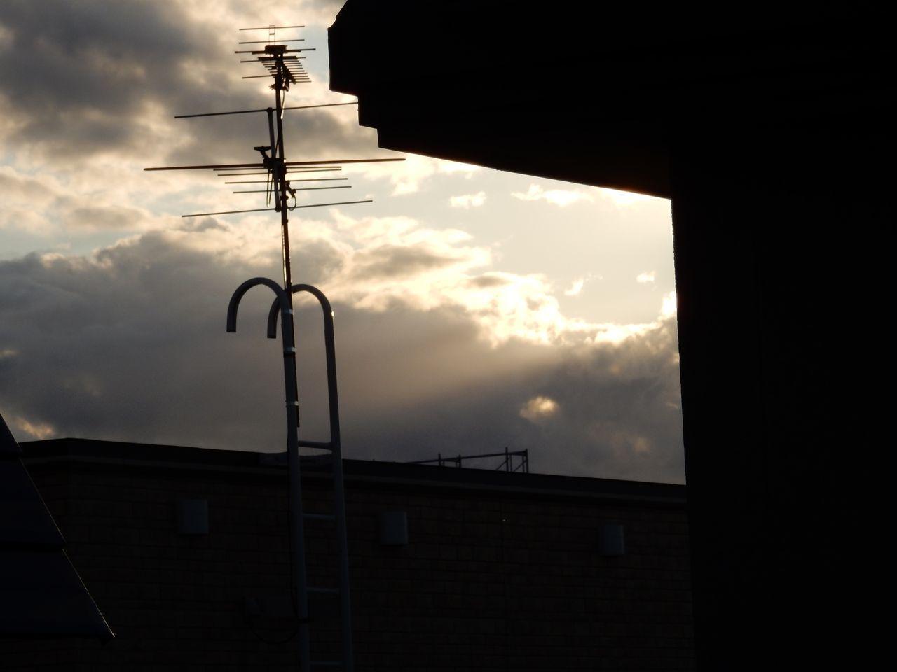 カラリと晴れ上がった夏日_c0025115_22564207.jpg
