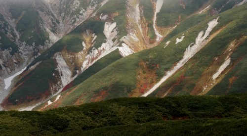 立山群峰の夏衣装_f0055131_09325831.jpg