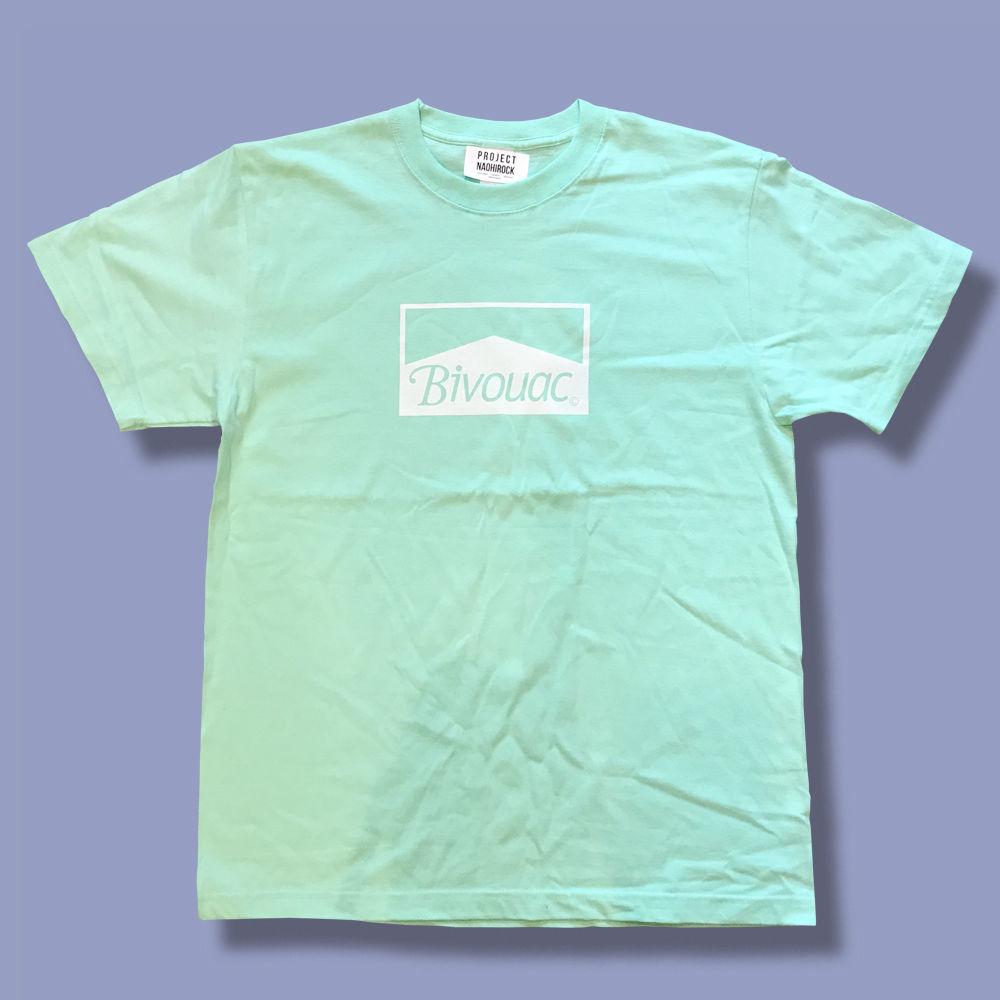 BVLS02  Pastel T-shirt..._b0177537_17551460.jpeg