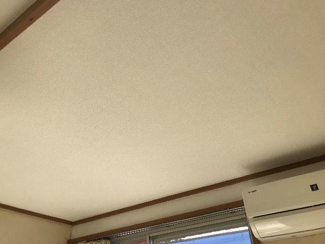 6日目・天井と看板と壁と仕入れ_f0031037_20243678.jpg