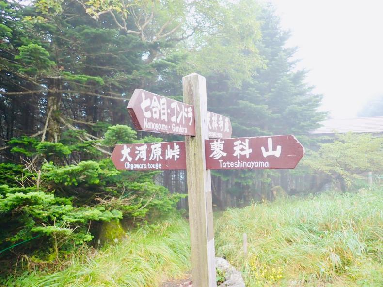 「蓼科山」「北横岳」結局登らない山歩き_b0404748_10002490.jpg