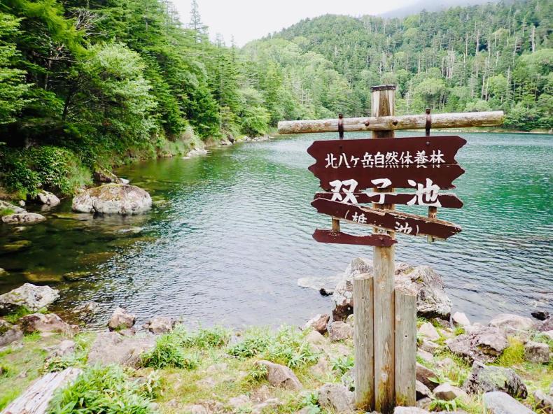 「蓼科山」「北横岳」結局登らない山歩き_b0404748_11454017.jpg