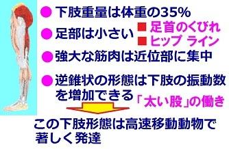 b0165362_08164937.jpg