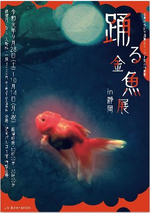 踊る金魚展 静岡パルコ開催(^^)/_e0385587_10585676.jpg