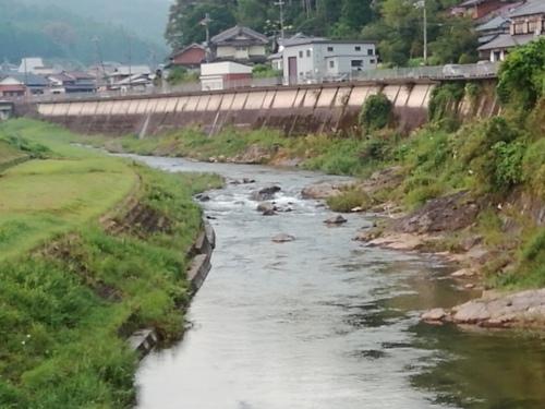 2019/9/4   水位観測  (槻の木橋より)_b0111189_05410861.jpg