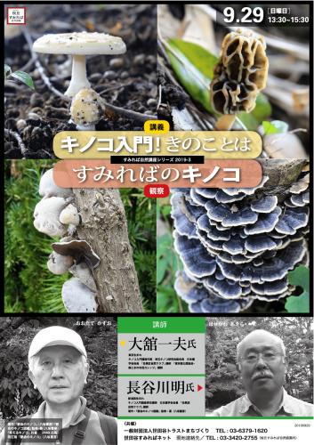 自然講座「都会のキノコ入門」のお知らせ_b0049307_12491264.png